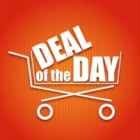 Deal Of The Day (Feather Flag, Pole Kit with Flexible Tip & Ground Spike)